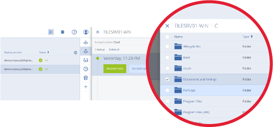 Acronis screen capture