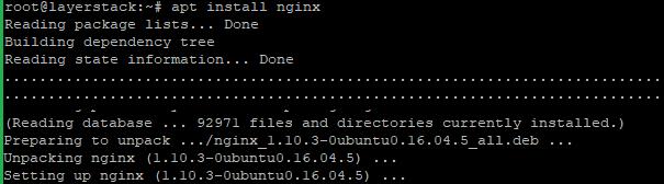 nginx11